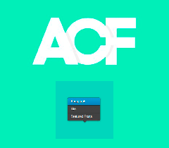 acf-flexible-content-field