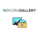 Envira Gallery Downloads