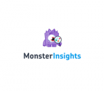 MonsterInsights Pro