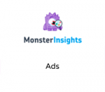 MonsterInsights Ads
