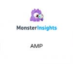 MonsterInsights AMP