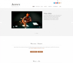 Agency (Themify)