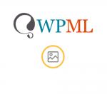 WPML Media